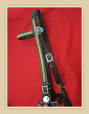 Headstall with buckle adjustment on pole, fancy Conchos and rawhide braiding