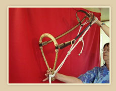 1/2 inch rawhide bosal with color string , leather hanger with rawhide lace, rawhide laced buckle and fiador
