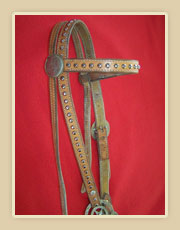 Headstall with silver spots