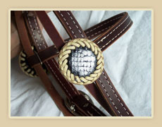 Snake skin rosettes with rawhide or leather braiding